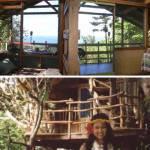 1 Tree House of Hawaii