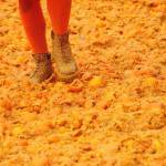 A member of a team walks over oranges du
