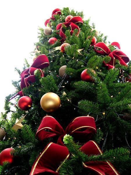 Gli Alberi Di Natale Piu Belli Al Mondo Tra Gioielli E Lettere A