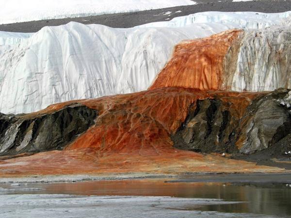 Blood falls Antartide mistero cascata di sangue