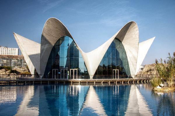 L'Oceanografic Valencia Spagna