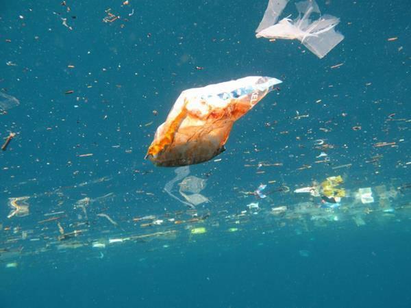 rifiuti in mare mari inquinati