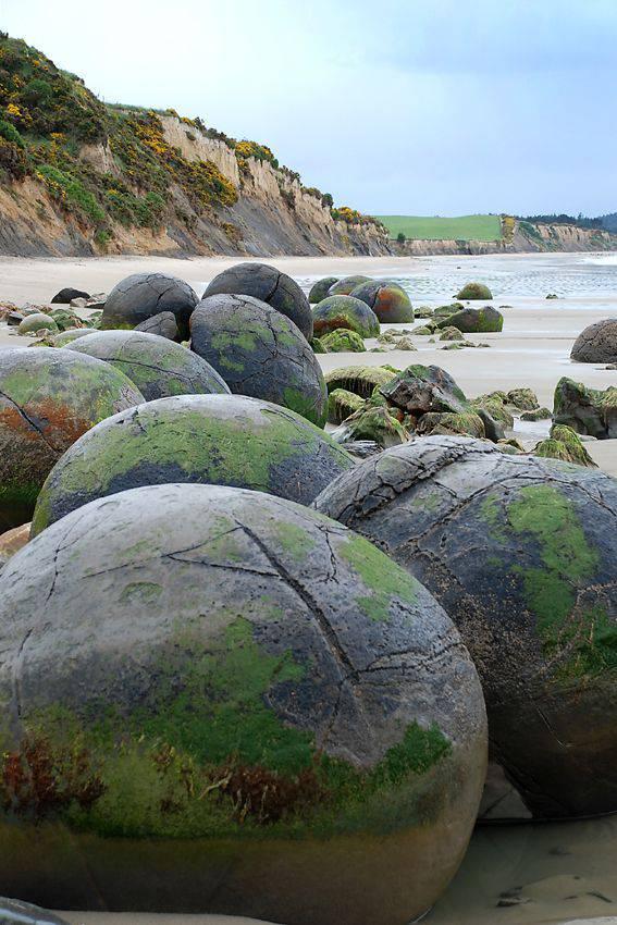 spiaggia di koekohe