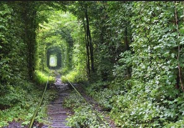 tunnel dell'amore estate
