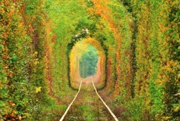 tunnel of love autunno