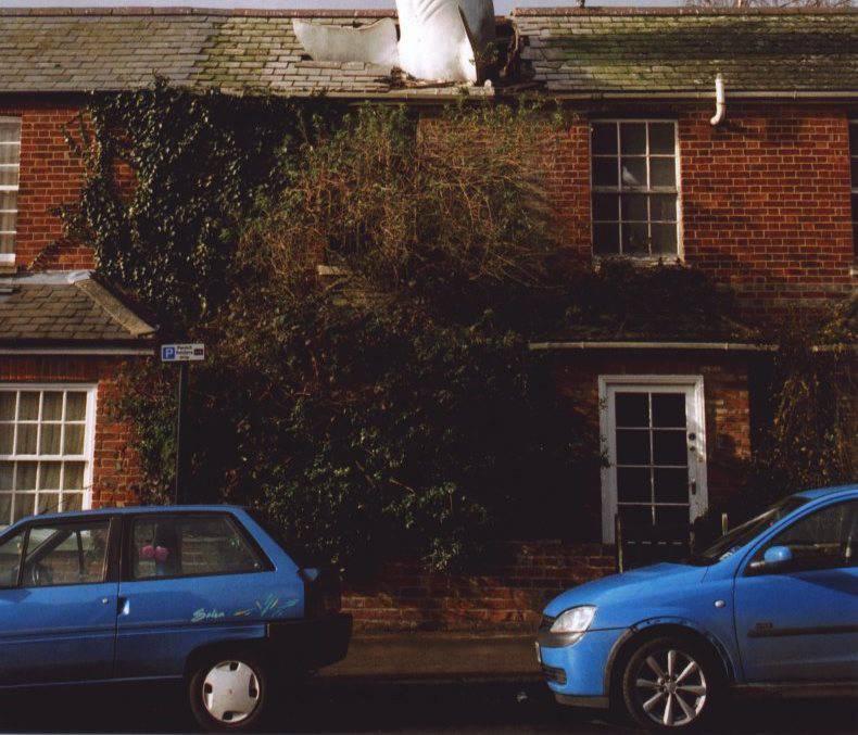 Headingtonsharkfront