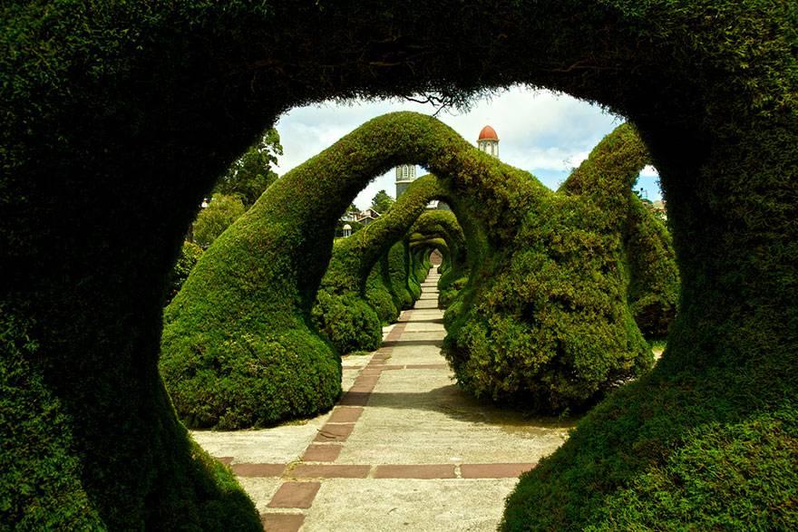 Parco Francisco Alvarado, Costa Rica