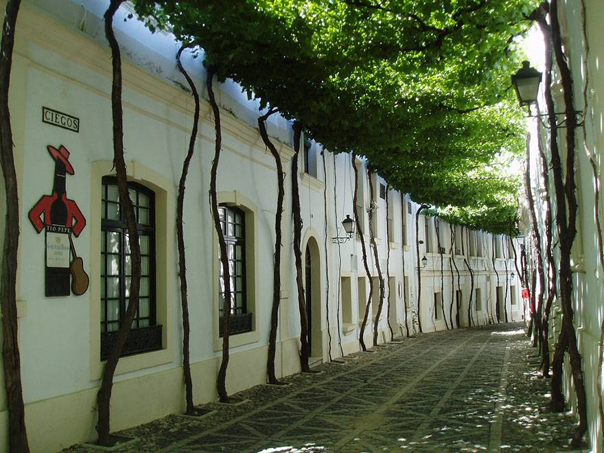 Una strada di Jerez, Spagna