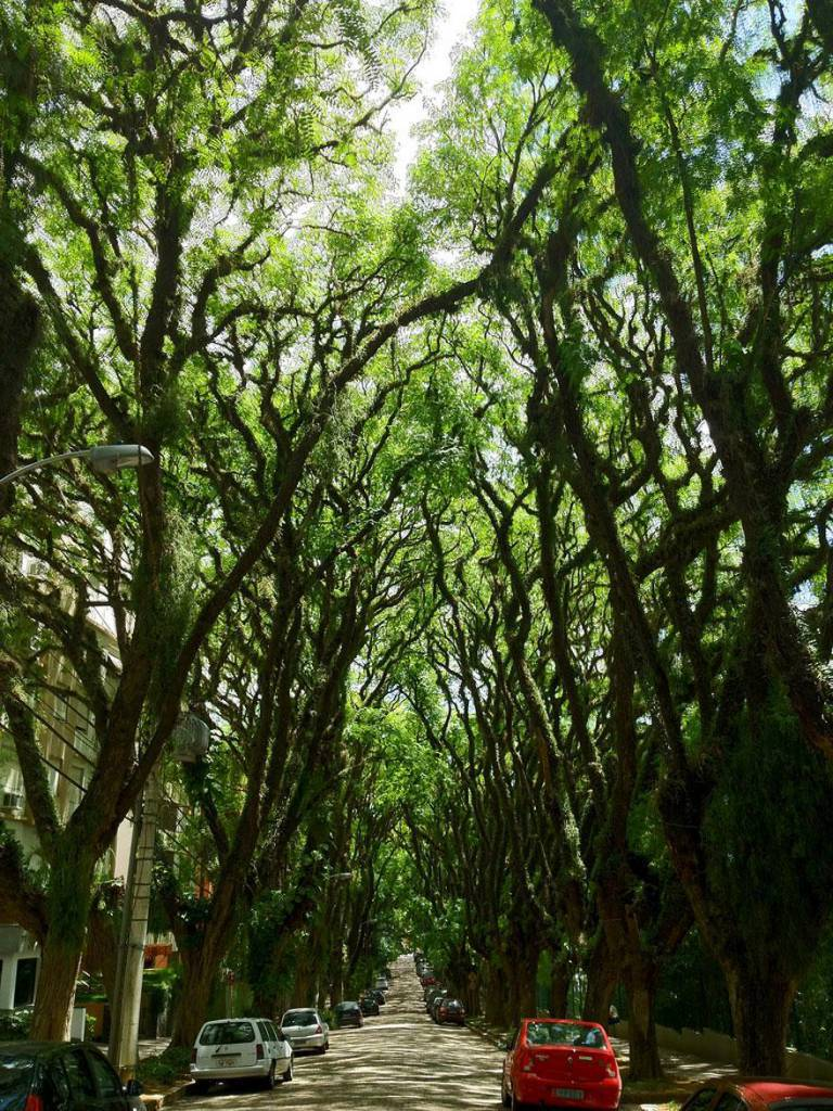 Una strada di Porto Alegre, Brasile 2