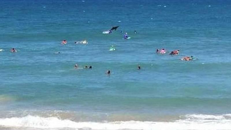 Attacco di uno squalo