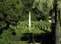 labirinto arboreo