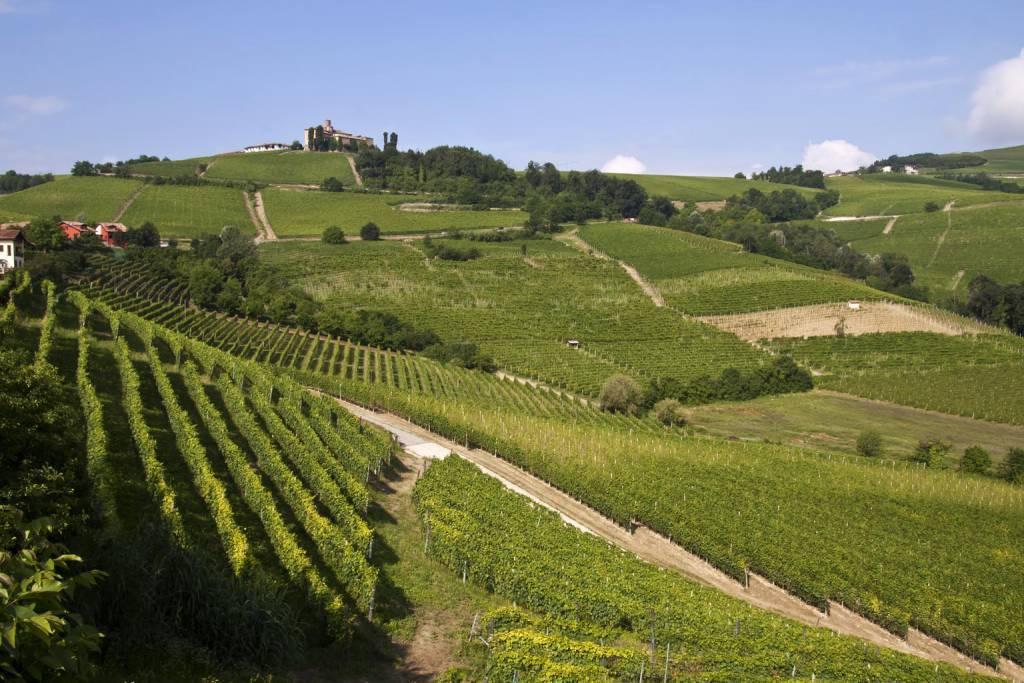 Langhe Roero-Monferrato @Wikipedia