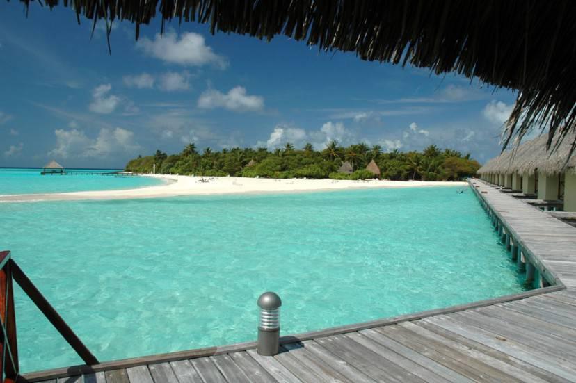 Maldive @Wikipedia