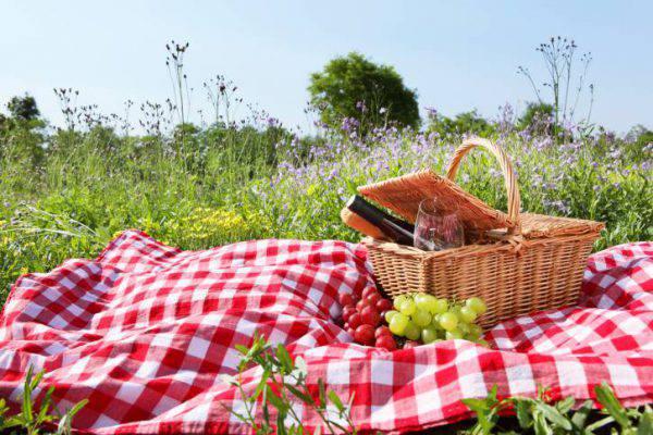 picnic di ferragosto 2018