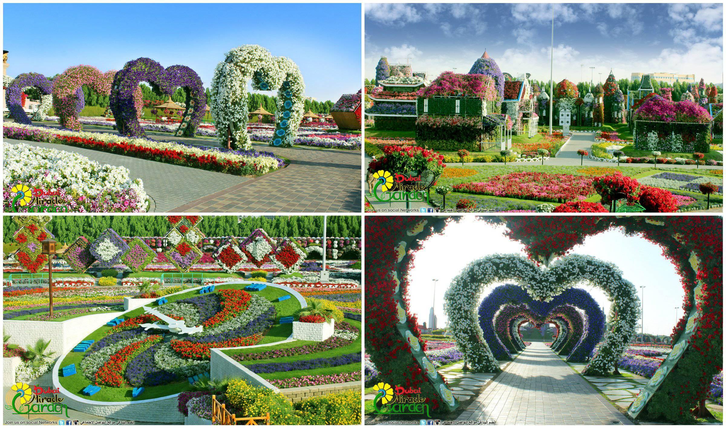 Il giardino piu 39 grande e bello del mondo miracoloso - Giardini particolari ...