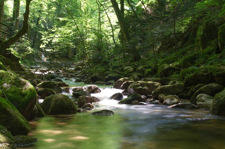 Cascate di Geroldsau, Foresta Nera, Germania (Thinkstock)