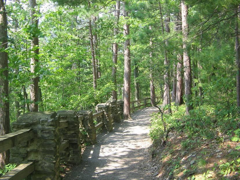 Turkey Path (sentiero dei tacchini), Leonard Harrison State Park, Pennsylvania (Ruhrfisch da Wikimedia, Licenza CC BY-SA 3.0)