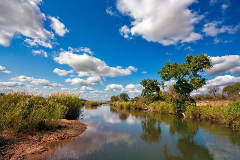 Kruger National Park (Foto di freestock.ca. Licenza CC BY-SA 3.0 via Wikimedia Commons)