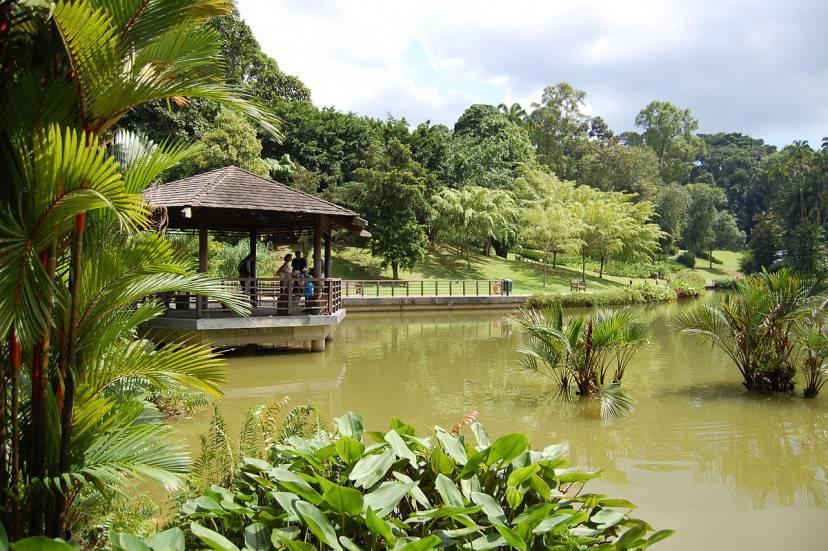 Symphony Lake, Giradini Botanici di Singapore (Foto di edwin.11. Licenza CC BY 2.0 via Wikimedia Commons)