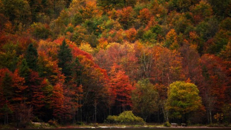 Königssee, Baviera, in autunno (Thinkstok)