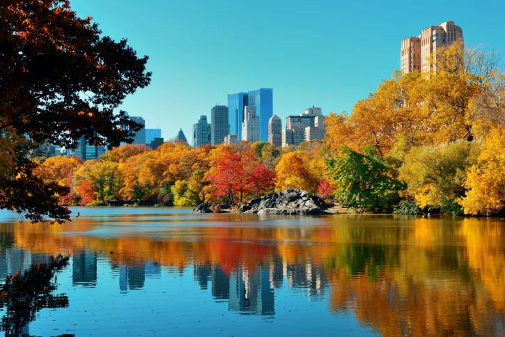 Central Park di New York in autunno (Thinkstock)