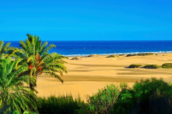 Riserva Naturale delle Dune di Maspalomas, Gran Canaria (Thinkstock)