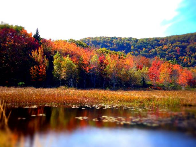 Paesaggio del Maine in autunno (Thinkstock)