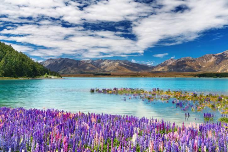 Lago Tekapo, Nuova Zelanda (Thinkstock)
