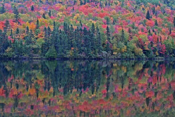 Omtario, Canada, autunno (Thinkstock)