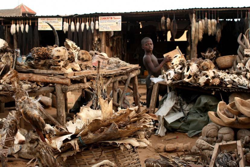 Mercato Festish di Lomé, Togo (Foto di Dominik Schwarz. Licenza CC BY-SA 3.0 via Wikimedia Commons)