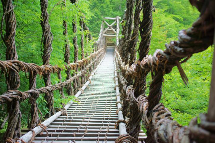 Ponte nella foresta di Shikoku, Giappone (Thinkstock)