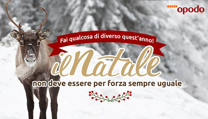 Contest Natale Opodo