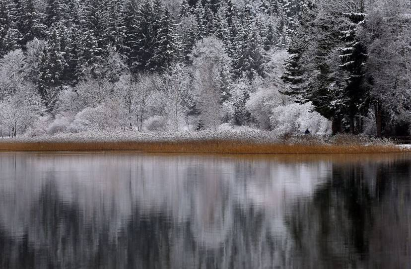 Lago Weissensee, Fuessen, Germania (KARL-JOSEF HILDENBRAND/AFP/Getty Images)