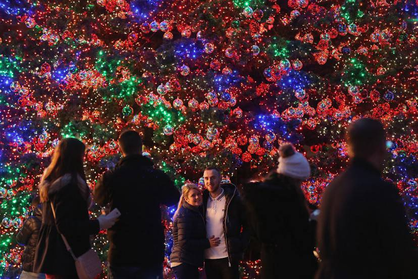 Albero di Natale a Berlino (Sean Gallup/Getty Images)