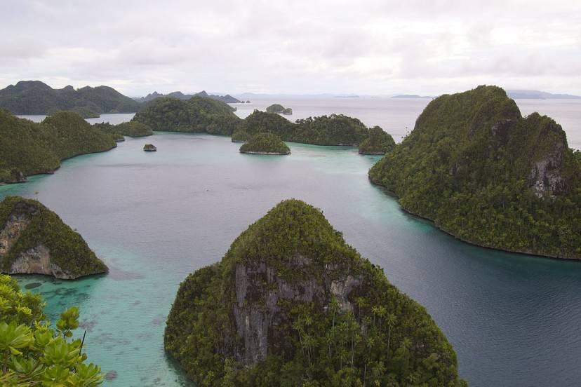 Isole di Raja Ampat, Papua Occidentale, Nuova Guinea, Indonesia (Elias Levy. CC BY 2.0 via Commons)