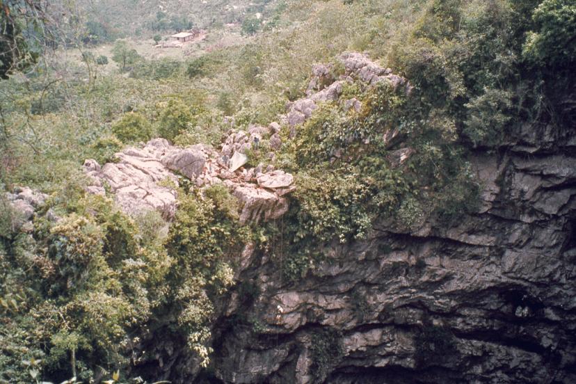 Grotta di Sótano de las golondrinas, Messico (Di Stubb. Fal via Wikicommons)
