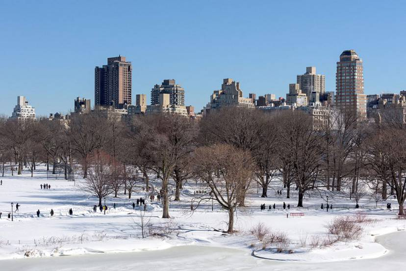 Central Park, New York (FRANCOIS XAVIER MARIT/AFP/Getty Images)