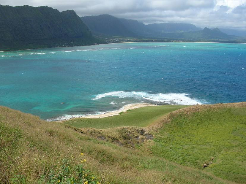 Ohau, Hawaii (Foto di Forest & Kim Starr. Licenza CC BY 3.0 via Wikimedia Commons)