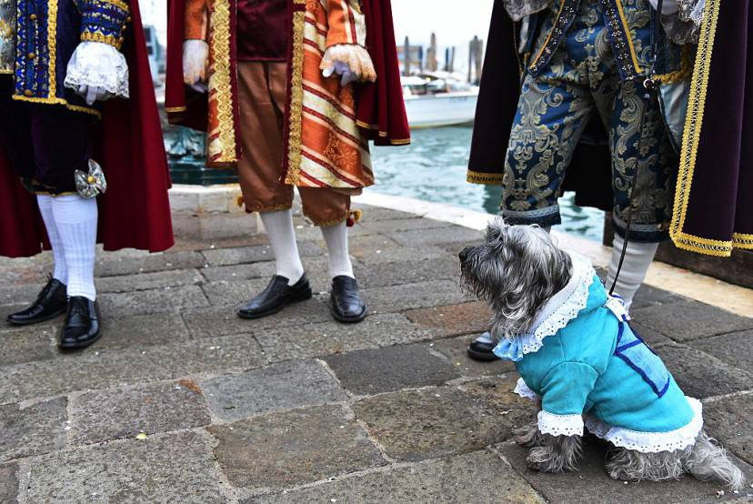 Carnevale Venezia 2016 (VINCENZO PINTO/AFP/Getty Images)