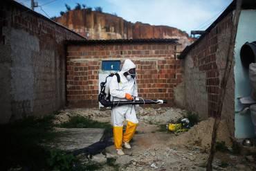 Zika: disinfestazione delle zanzare in Brasile (Mario Tama/Getty Images)