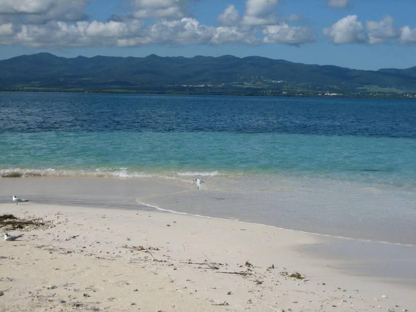 Guadalupa, spiaggia di Basse-Terre (Di bobyfume. CC BY-SA 3.0, Wikicommons)