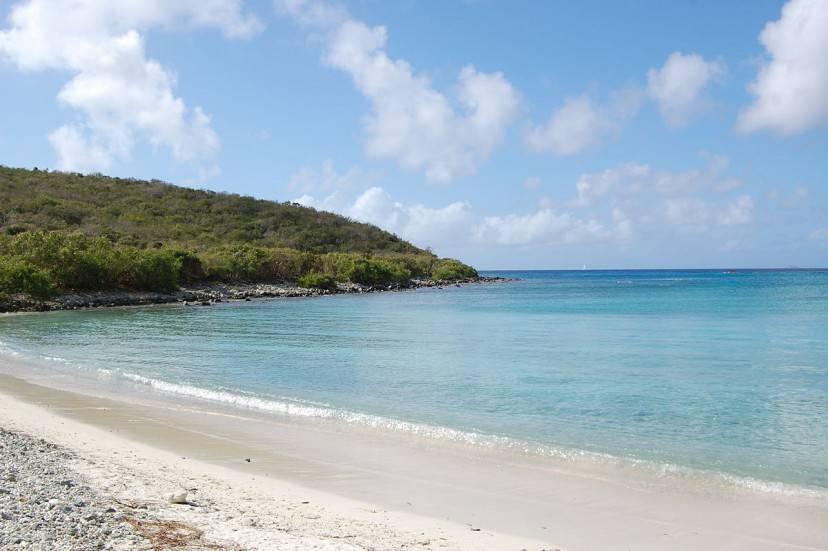 Spiaggia sull'Isoal di Saint John, Isole Vergini Usa (Di Desalvionjr. CC BY-SA 3.0, WIkicommons)