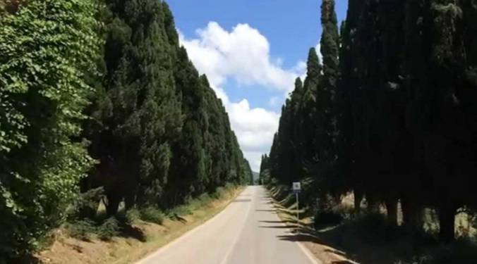 strada bolgheri strada più bella d'Italia