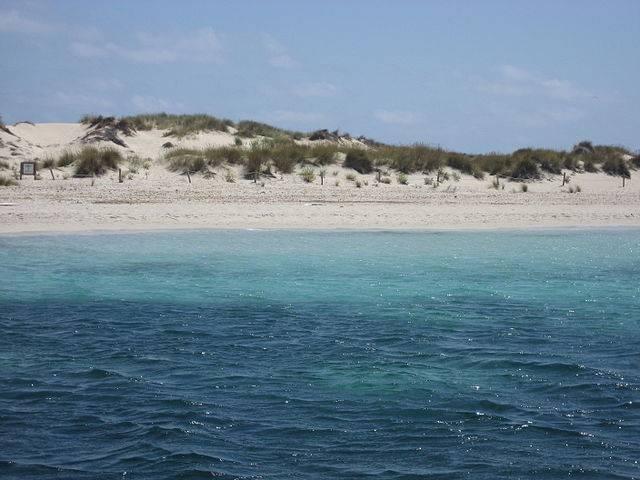 Platja de s'Alga, s'Espalmador, Formentera (Vriullop, CC BY-SA 3.0, Wikicommons)