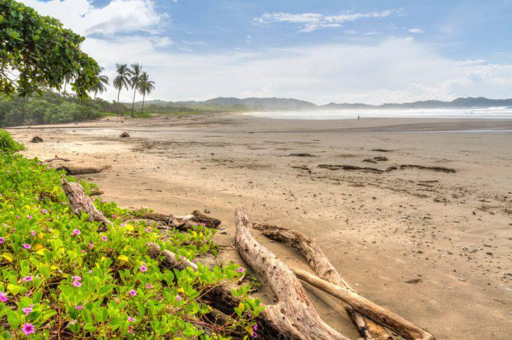 Spiaggia di Guiones, Costa Rica (itock)