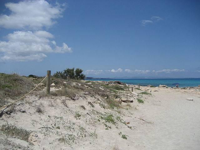 Ses Platgetes, Formentera (Vriullop, CC BY-SA 3.0, Wikicommons)