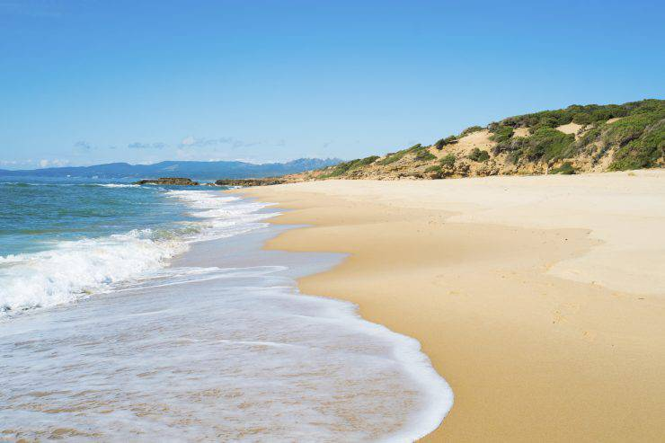 Scivu beach in green coast, Sardinia, West coast, Arbus, Italy