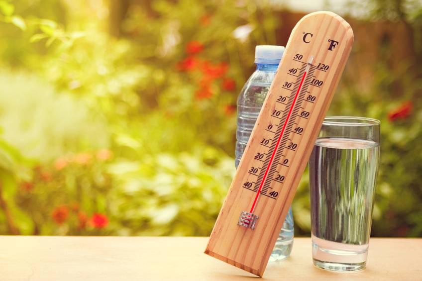 caldo estate afa