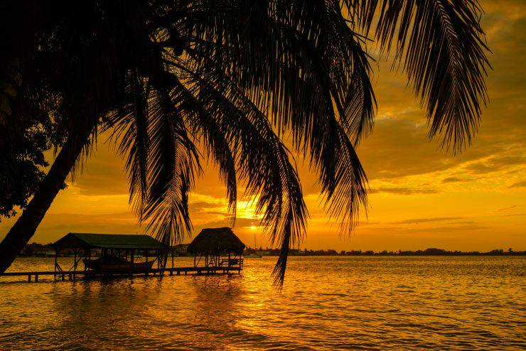 Palm trees and sunset over the bay of Bocas del Toro, Panama