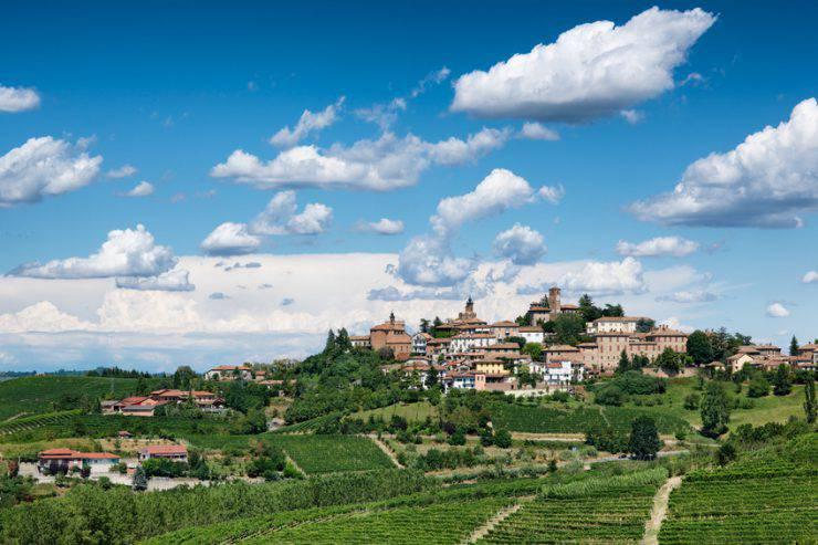 Cuneo castagne